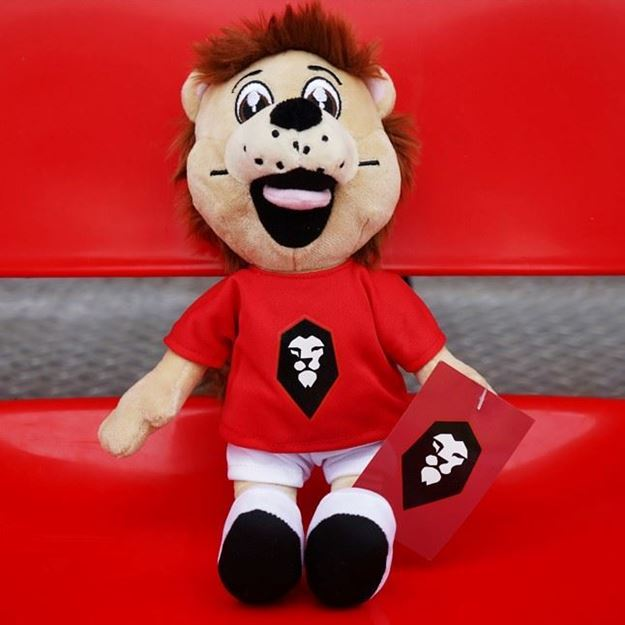 Picture of SALFORD CITY Mascot Teddy